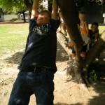 Dondolandosi attaccati all'albero
